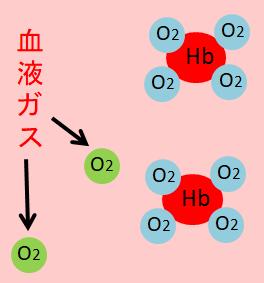 酸素の血液ガス画像