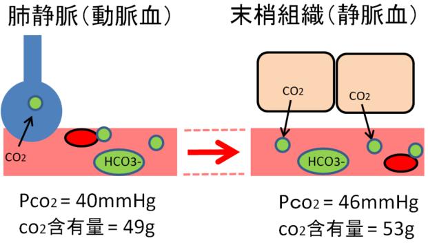 二酸化炭素の運搬