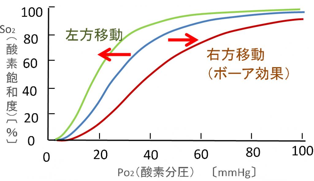 酸素解離曲線の移動説明画像