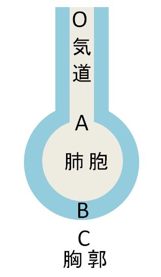 呼吸抵抗の図